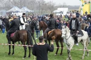 Incuratul cailor 2016 Brancoveni_48