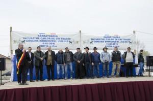 Incuratul cailor 2016 Brancoveni_6