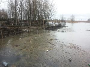 inundatii-dunare6