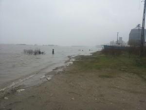 inundatii-dunare8